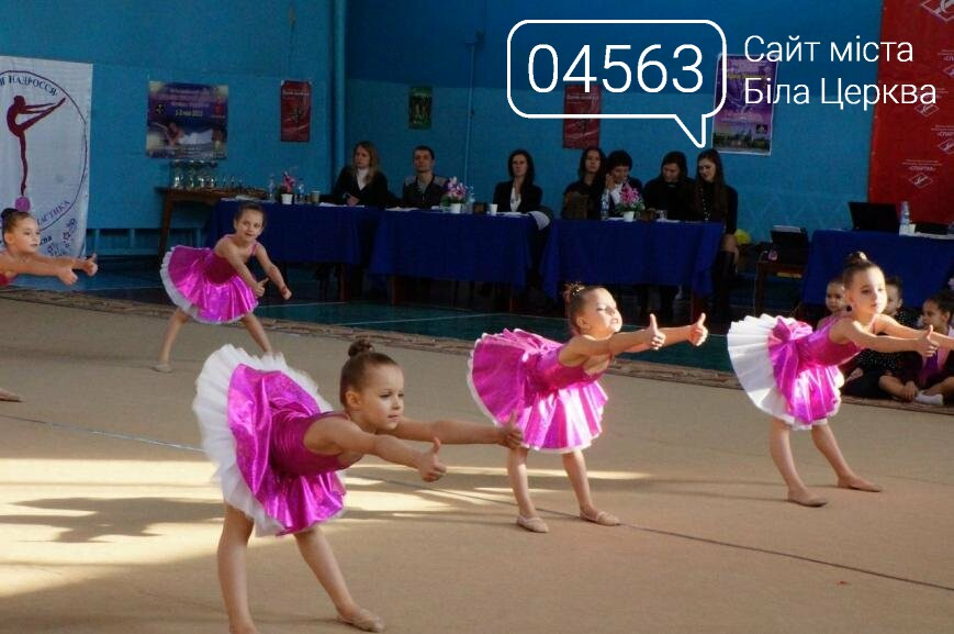В Білій Церкві пройшов обласний фестиваль з художньої гімнастики, фото-5