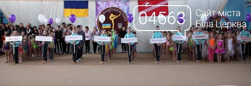 В Білій Церкві пройшов обласний фестиваль з художньої гімнастики, фото-11