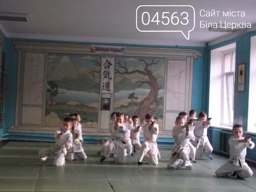 Як проходять заняття айкідо в Білій Церкві, фото-1