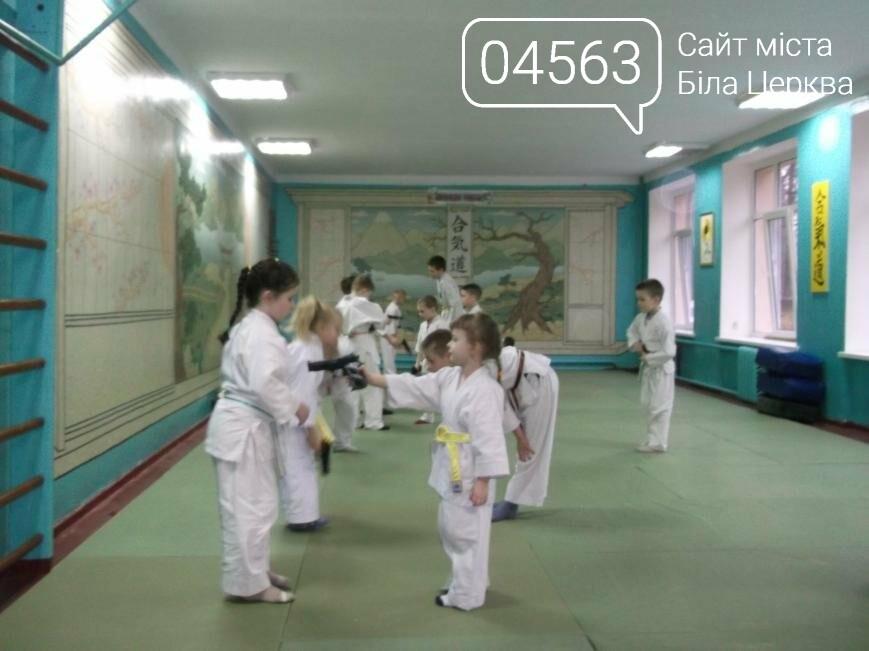 Як проходять заняття айкідо в Білій Церкві, фото-7