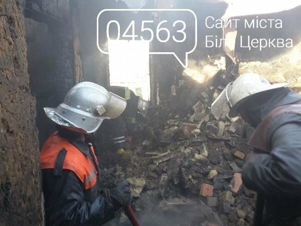 У Білоцерківському районі через пожежу загинула людина, фото-1