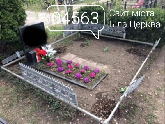 """Розкрадання огорож на кладовищі """"Сухий Яр"""". Вандала затримали, але охорону потрібно покращити, фото-2"""