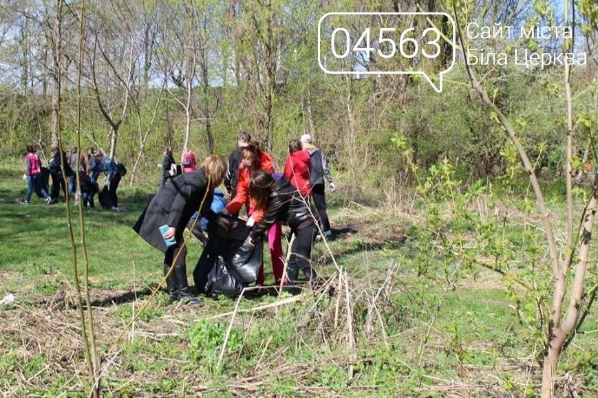 На березі річки Рось стало чисто завдяки студентам, фото-3