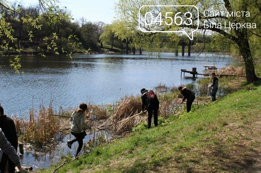 На березі річки Рось стало чисто завдяки студентам, фото-2