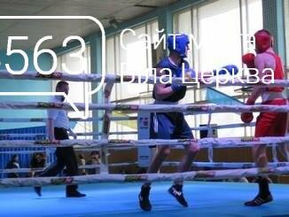 У Білій Церкві розпочався ХХХІІ Всеукраїнський турнір з боксу, фото-2