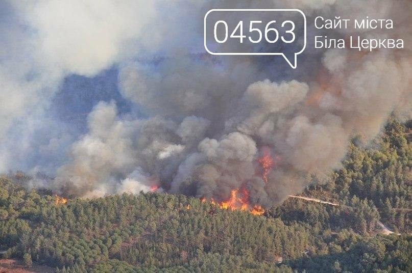 Пожежа в чорнобильській зоні відчуження охопила 25 гектарів