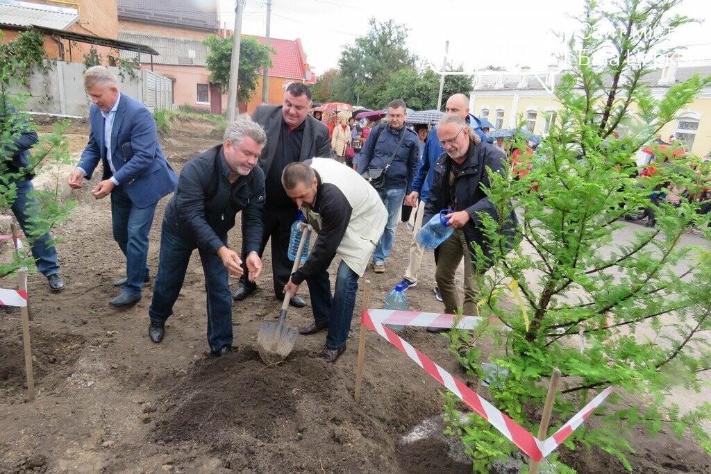 На місці майбутнього пам'ятного знаку жертвам Голокосту висадили метасеквої, фото-5