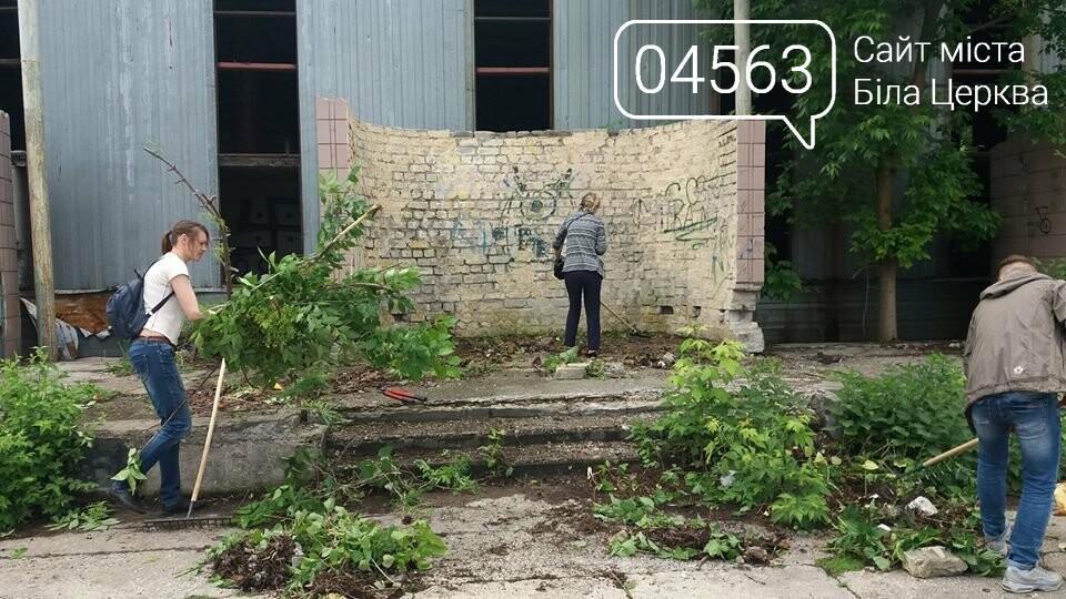 Білоцерківські активісти прикрасять дерева в'язаними візерунками, фото-3