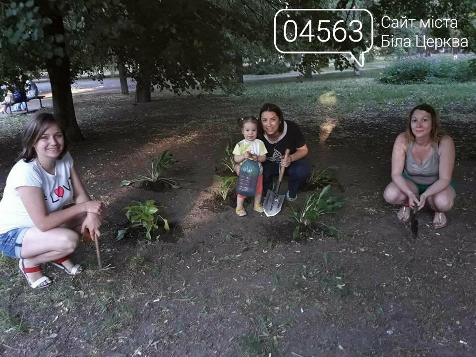 Білоцерківські активісти прикрасять дерева в'язаними візерунками, фото-6