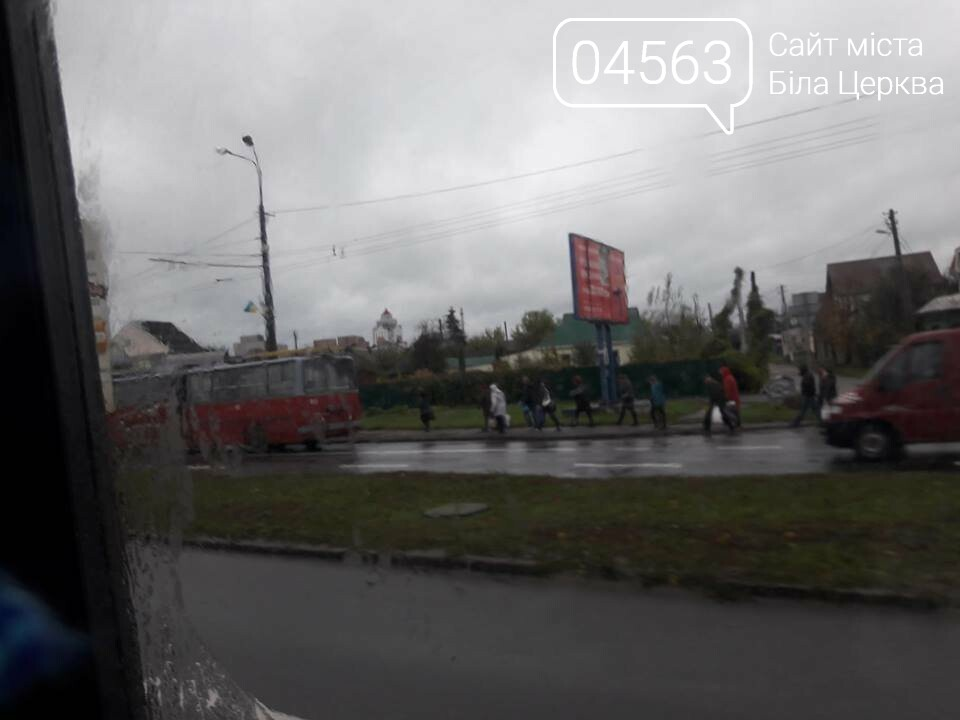 Через обірвані проводи у Білій Церкві вже 2 години стоять тролейбуси, фото-1
