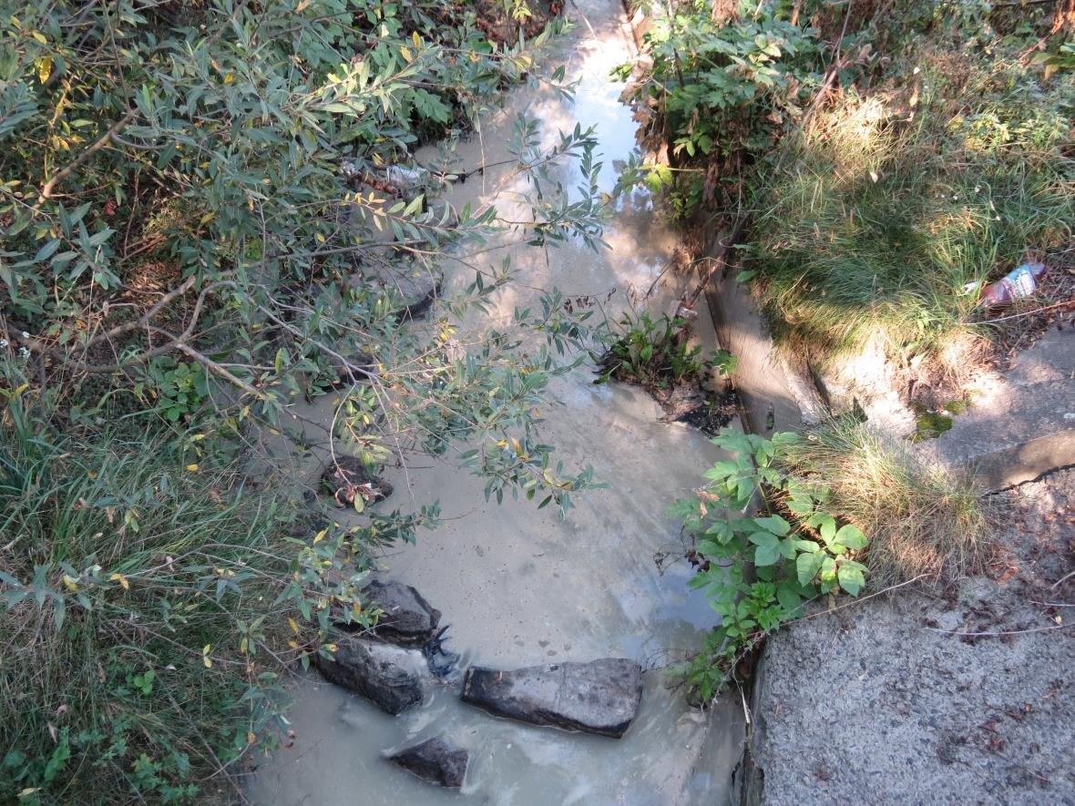 Забруднення стоками: Цинічна катастрофа на річці Протока
