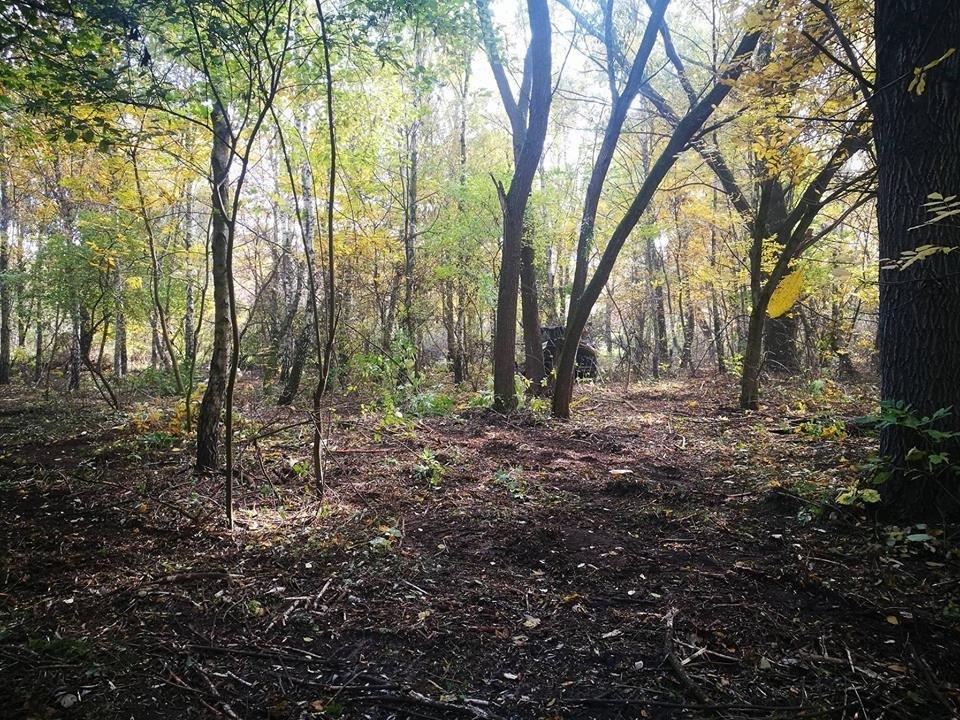 """Острів """"Дитинства"""" в Білій Церкві розчищає потужний лісовий мульчер"""