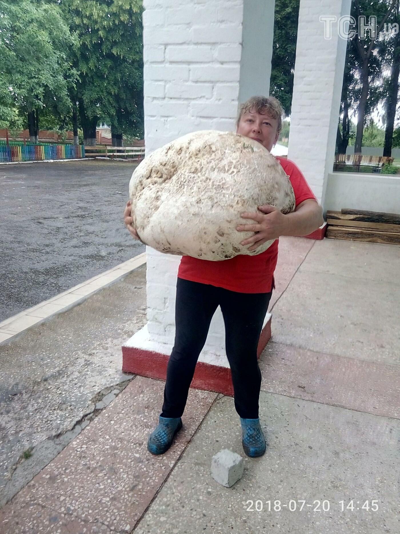 На Білоцерківщині знайшли 18-кілограмовий гриб-дощовик