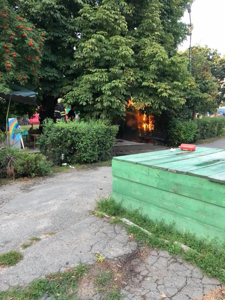 У парку Шевченка в Білій Церкві сталася пожежа, фото-4