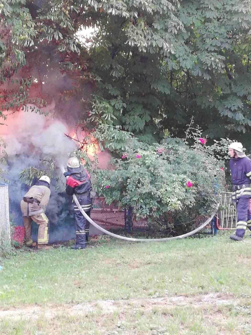 У парку Шевченка в Білій Церкві сталася пожежа, фото-1