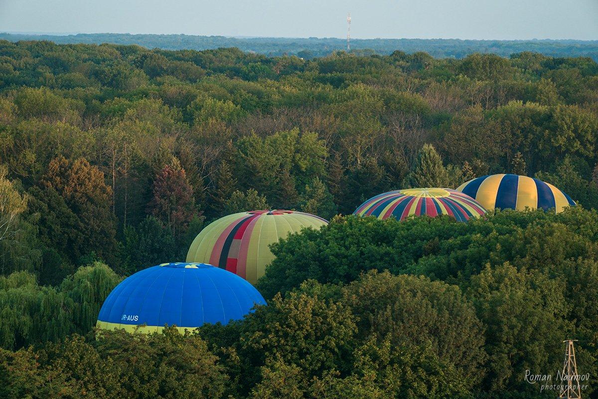 Фестиваль повітряних куль у Білій Церкві відвідало близько 60 тисяч людей, фото-56