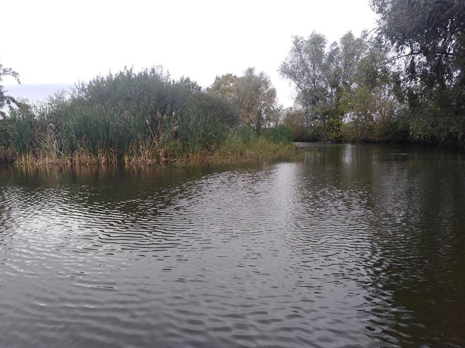 Річку Рось забруднюють фекаліями , фото-4