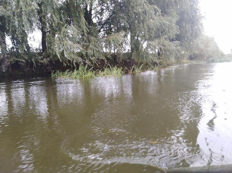 Річку Рось забруднюють фекаліями , фото-3