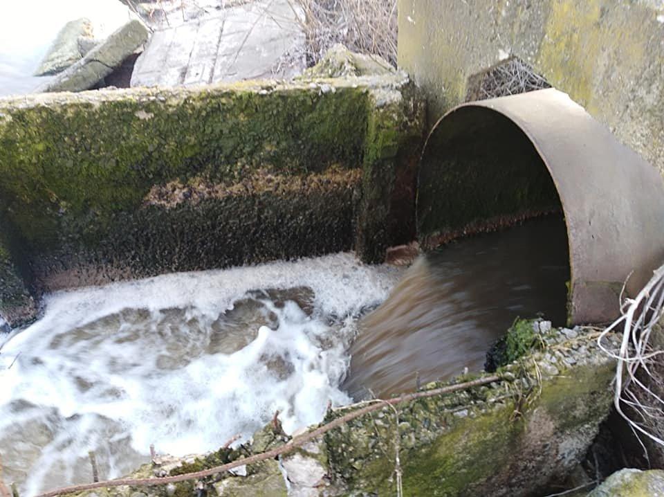 На Білоцерківщині в черговий раз зафіксували забруднення річки Рось , фото-10