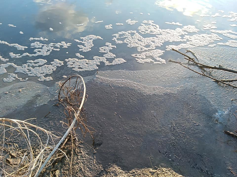 На Білоцерківщині в черговий раз зафіксували забруднення річки Рось , фото-3