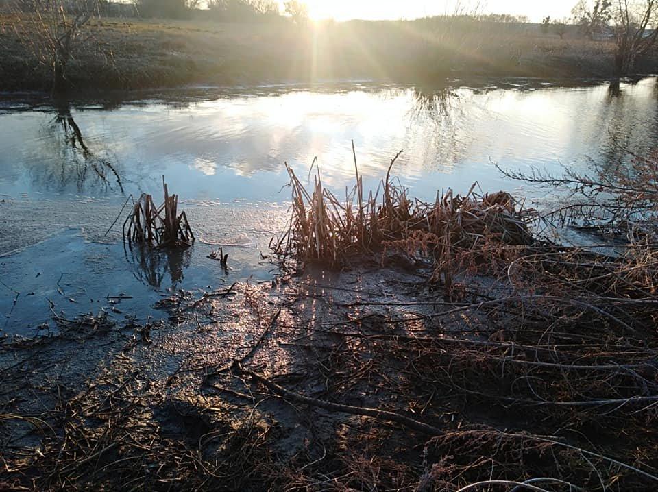 На Білоцерківщині в черговий раз зафіксували забруднення річки Рось , фото-4