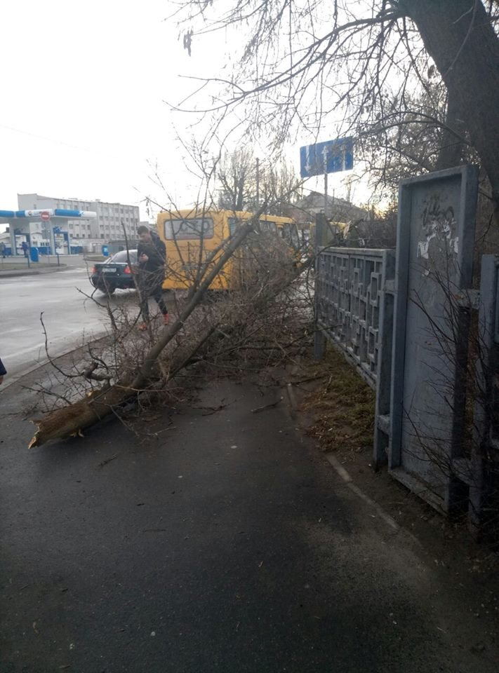 До уваги білоцерківців: ДСНС оголосила «помаранчевий» рівень небезпеки через вітер, фото-1