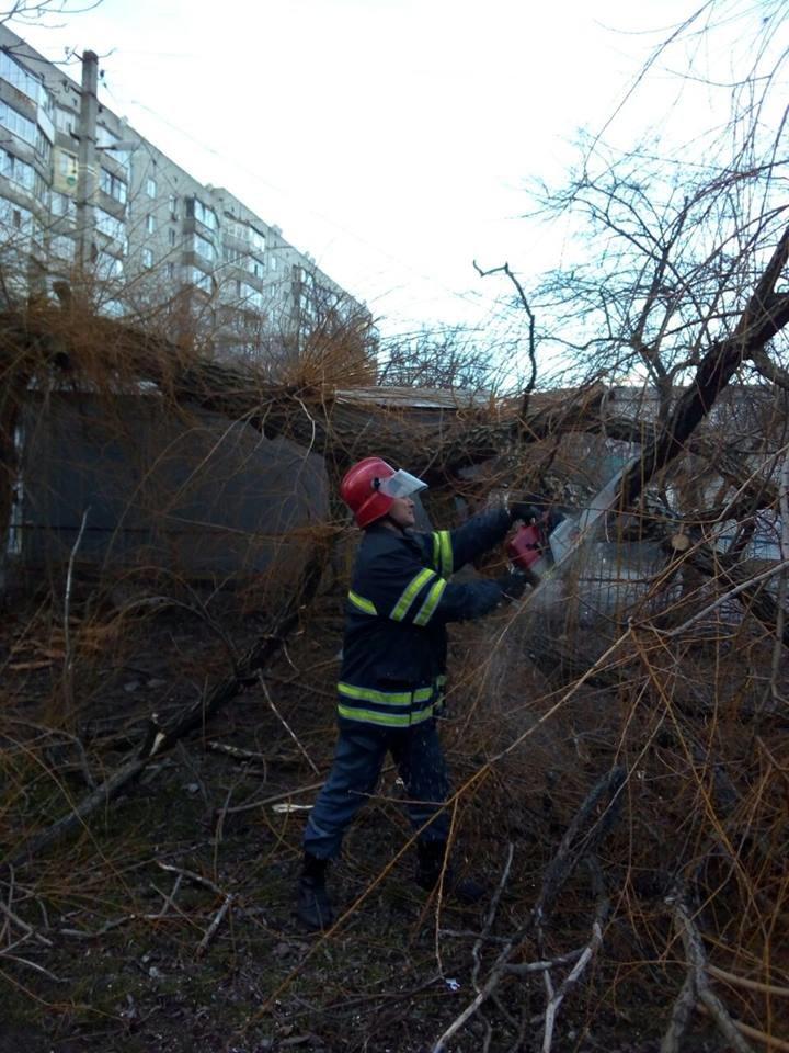 Повалені дерева і зірвані дахи: що наробила негода в Білій Церкві, фото-2