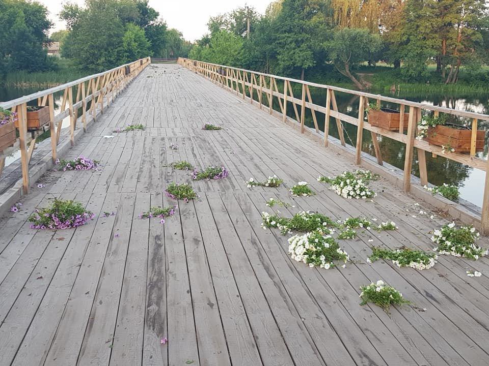 У Білій Церкві вандали знову понівечили квіткові кашпо на Дерев'яному мосту , фото-1