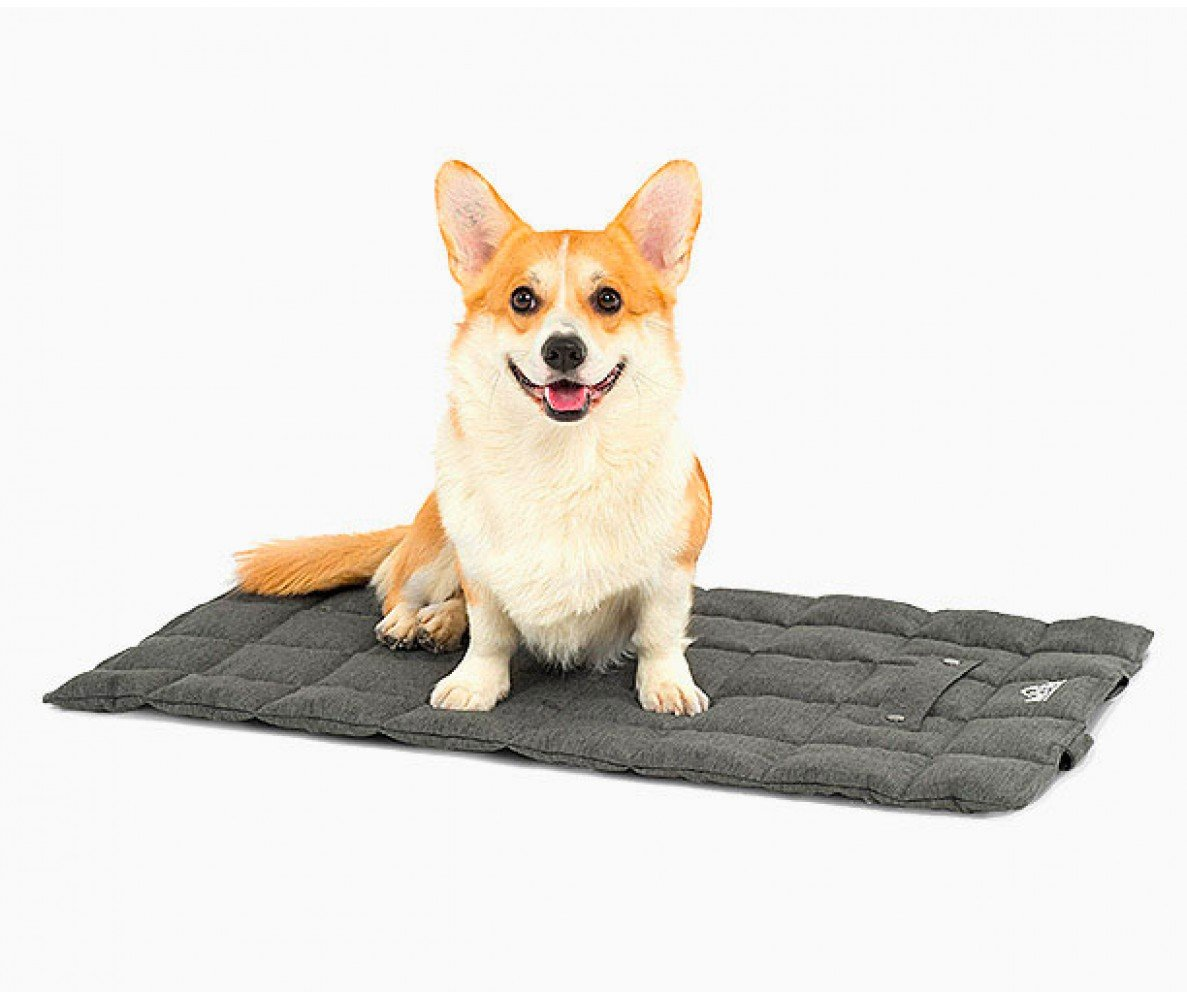 Комфортне спальне місце для вашої собаки: як вибрати ідеальний варіант , фото-1