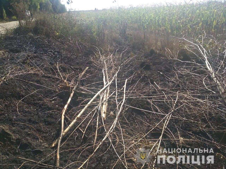 На Білоцерківщині через підпал трави загинула людина , фото-1
